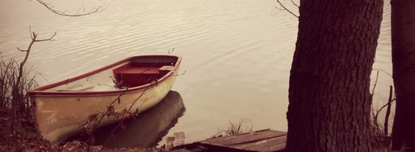 Boot neben dem Baum