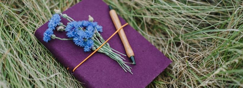 Notizbuch im Gras